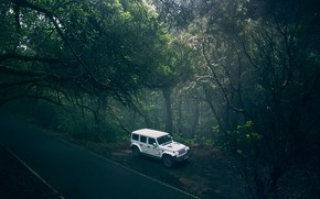 Picture road, forest, transport, car, Jeep Wrangler Forest