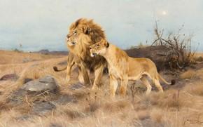 Picture 1913, German painter, Friedrich Wilhelm Kunert, German painter, Friedrich Wilhelm Kuhnert, On the warpath, On …