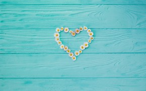 Picture background, tree, Board, chamomile, love, vintage, heart, wood, texture, blue, background, camomile