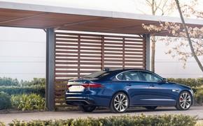 Picture blue, Jaguar, sedan, four-door, Jaguar XF, 2020, XF