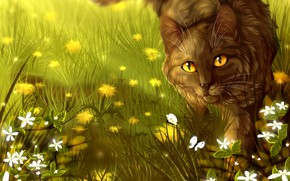 Picture cat, flowers, Cats-Warriors, Brambleclaw