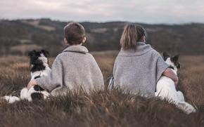 Picture field, dogs, children