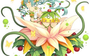 Picture Girl, Flower, Plant, Monmusu Harem