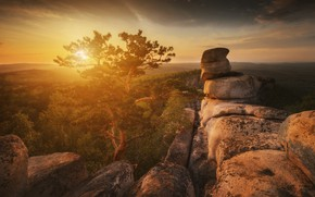 Picture light, mountains, rocks, pine