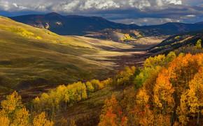 Picture autumn, forest, clouds, trees, landscape, mountains, river, hills, direction, Golden autumn