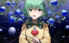 Picture girl, roses, Touhou, blue roses, Koishi Komeiji, Touhou, Touhou