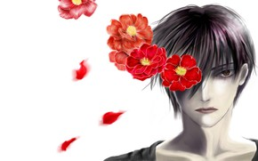 Picture flowers, art, guy, Camellia, Yuuki Anzai, Line Of The Devil, Devils Line