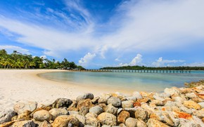 Picture sand, sea, beach, summer, the sky, the sun, stones, palm trees, shore, summer, beach, sea, …