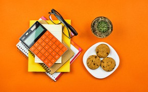 Picture orange, table, background, cactus, cookies, glasses, notebook, saucer, calculator