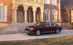 Picture Sedan, 2019, Aurus, Senate