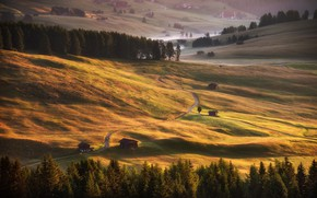 Wallpaper road, field, autumn, forest, light, mountains, fog, hills, the slopes, field, home, dal, ate, slope, ...