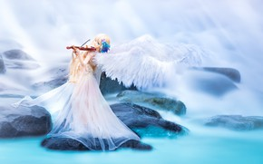 Picture water, stones, violin, toy, wings, doll