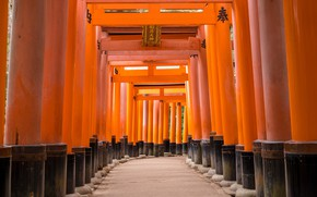 Picture Road, Japan, Religion, Torii, Shinto