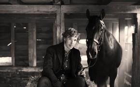 Picture horse, Benedict Cumberbatch, Benedict Cumberbatch, British actor