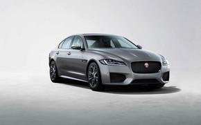 Picture Jaguar, sedan, Jaguar XF, 2019, Chequered Flag