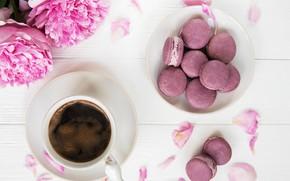 Picture coffee, cookies, peonies, Olena Rudo