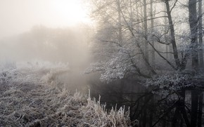 Picture frost, fog, river