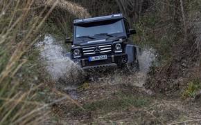 Picture grass, water, squirt, black, Mercedes-Benz, SUV, 4x4, G500, G-Class, 2015, G 500, 4x4², V8 biturbo