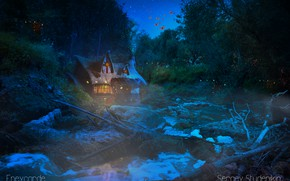 Picture forest, water, stars, night, magic, trine