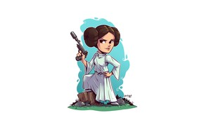 Picture Star wars, Leia, Derek Laufman