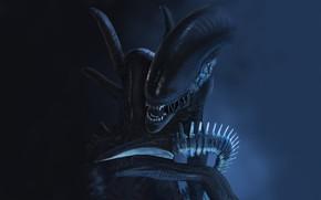 Picture fear, monster, Stranger, mouth, fangs, alien, horror, Alien, in the dark, eater, by Thomas