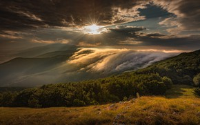 Picture forest, the sun, clouds, sunset, mountains, fog, hills