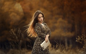 Picture autumn, girl, nature, butterfly, dress, book