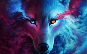 Picture Art, Wallpaper, Wolf