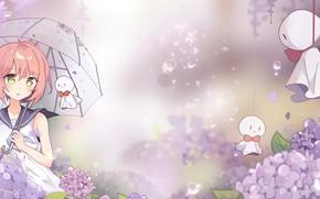 Picture flower, umbrella, air, japanese, anime girls, rain drops, anime girl, anime Wallpapers, rain cloud