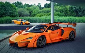 Picture orange, coupe, McLaren, Senna, MSO, 2020, two-door, Senna LM