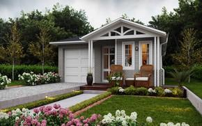 Picture plants, garden, vase, house, cottage