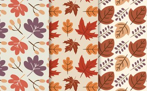 Picture leaves, background, texture, pattern, Colors, Background, collection, Leaves, Hand