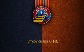 Picture wallpaper, sport, logo, hockey, Vitkovice Ridera
