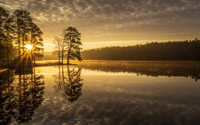 Picture trees, lake, reflection, dawn, morning, Tennessee, Tn, Natchez Trace State Park, Maples Creek Lake