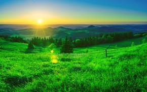 Picture Sunrise, Grass, Space