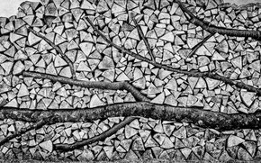 Picture texture, wood, black and white