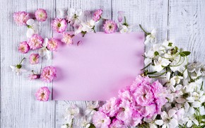 Picture flowers, pink, wood, pink, flowers, beautiful, tender, frame, floral