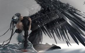 Picture demon, sake, girl, fantasy, dress, wings, angel, elf, digital art, artwork, princess, bones, fantasy art, …
