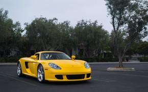 Picture Porsche, Carrera, Yellow