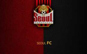 Picture wallpaper, sport, logo, football, Seoul