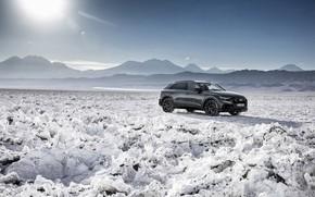 Picture Quattro, 2018, crossover, S-Line, 55 TFSI, Audi Q8