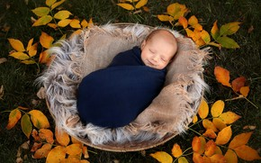 Picture autumn, child, baby