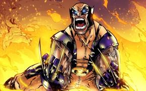 Picture Fire, Costume, Hero, Wolverine, Logan, Comic, Claws, Fire, Superhero, Hero, Rage, Wolverine, Logan, Marvel, Marvel …