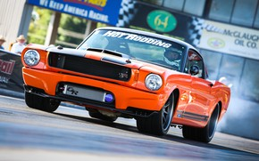 Picture Mustang, Ford, 1965, 1965 Ford Mustang Custom, Сustom