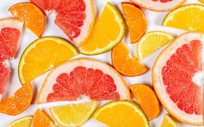Picture macro, citrus, slices