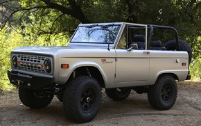 Picture Ford, 2012, Bronco, frame, ICON BR