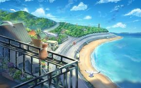 Picture sea, cat, balcony