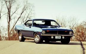 Picture Blue, Plymouth, Cuda, Classic car, Hemi