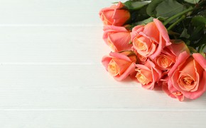 Picture roses, bouquet, beautiful, Atlascompany