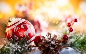 Picture holiday, ball, New year, bump, composition, Svetlana Kolpakova